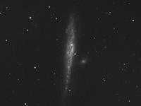 NGC 4631