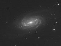 NGC 2903