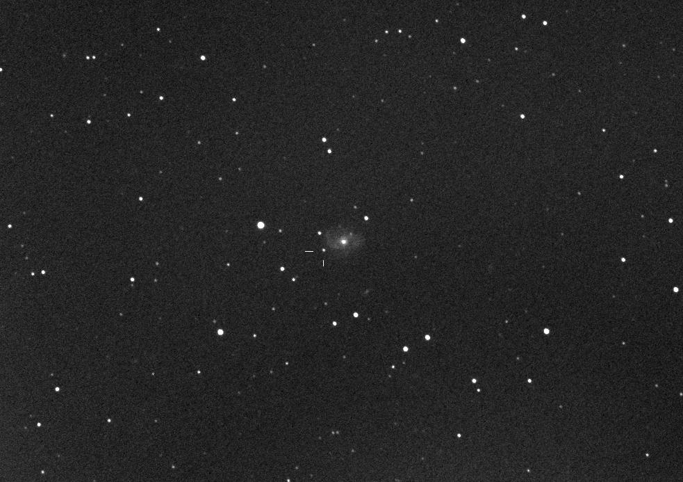 PSN J02224207+2816012 in IC 221: 28 Aug. 2013
