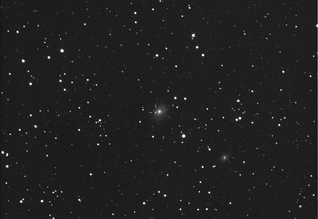 Supernova PSN J21134481+1334335 in NGC 7042: 25 Oct. 2013