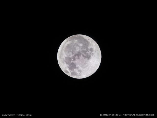 The Full Moon, still waiting for the Earth's shadow. Image by Gary Varney, shared live via The Virtual Telescope Project