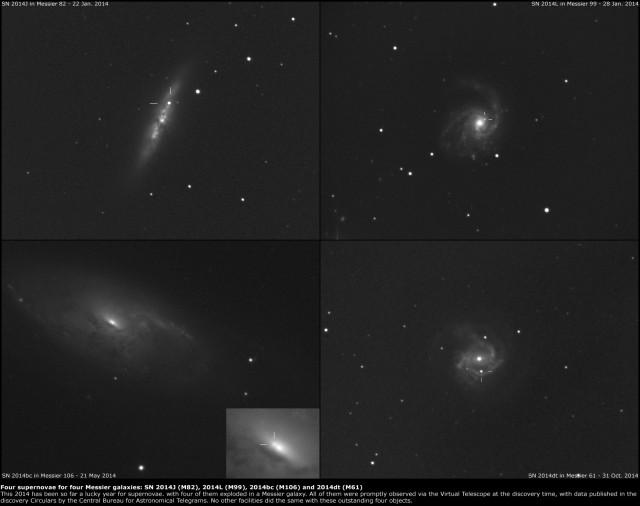 Supernovae SN 2014J in Messier 82, SN 2014L in Messier 99, SN 2014bc in Messier 106 and supernova SN 2014dt in Messier 61.