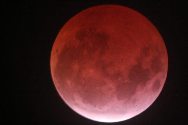 4 April 2015 lunar eclipse: the eclipse almost at maximum (Ron delvaux)