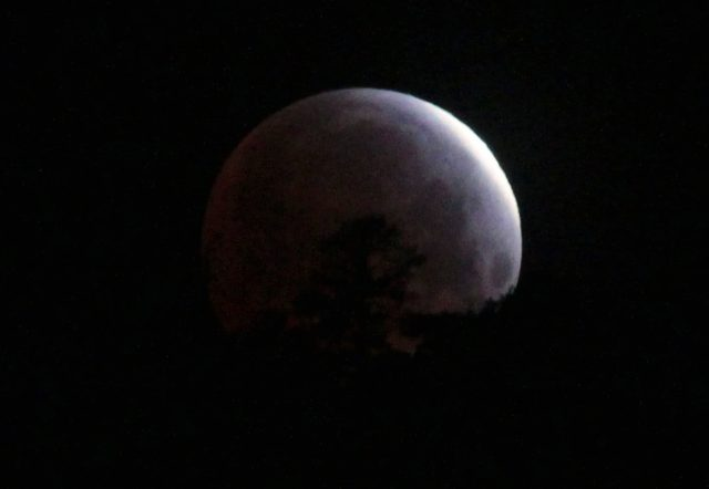 4 April 2015 lunar eclipse: the Red Moon sets above New Mexico (James McCue)