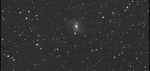 Supernova SN 2015G in NGC 6951. 14 Apr. 2015