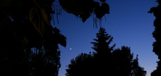 The Moon, Venus and Jupiter: 20 June 2015