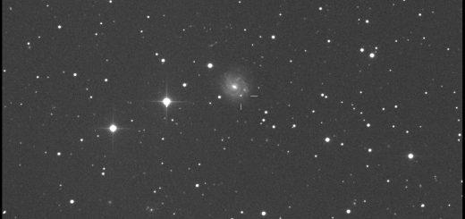 Supernova PSN J17292918+7542390 in NGC 6412: 11 July 2015