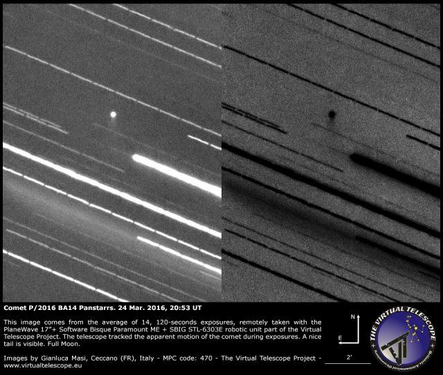 Comet P/2016 BA14 Panstarrs shows a nice tail - 24 Mar. 2016