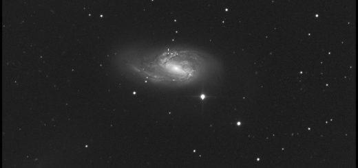Supernova ASASSN-15fq (aka 2016cok) in M 66 - 01 June 2016, 20:22 UT