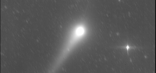 Comet C/2015 V2 Johnson and its anti-tail: 28 May 2017