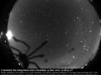 A geminid, the rising Moon and a tarantula: 14 Dec. 2017