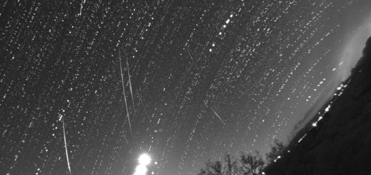 Meteors (almost all Geminids) captured on 14 Dec. 2017, during our live feed from Tenagra Observatories, AZ