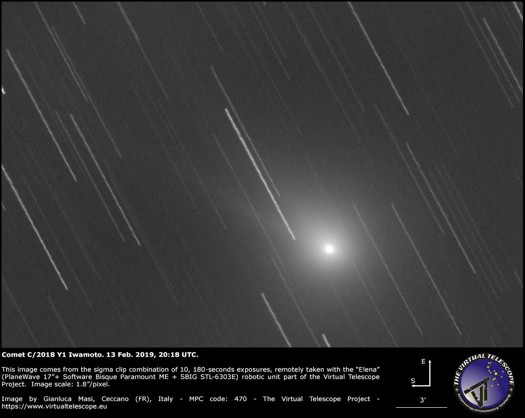 Comet C/2018 Y1 Iwamoto: 13 Feb. 2019